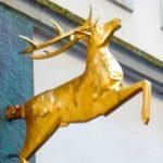 Pop-up-Store Goldener Hirsch – Neueröffnung